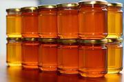 Продам мед натуральный подсолнух